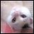 :icon87freeze: