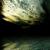 :icona-dinosawr-rawrs: