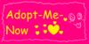 :iconadopt-me-now: