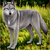 :iconage-of-the-wolves: