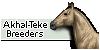 :iconakhal-teke-breeders: