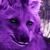 :iconalaricewolf: