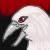 :iconalbinoblackbird:
