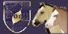 :iconalvarian-pony-guild: