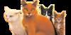 :iconamazingwarriorcats: