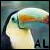 :iconamity-lilac: