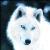 :iconanajawolf: