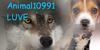 :iconanimal10991luve: