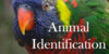:iconanimalidentification: