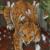 :iconanomy-meow: