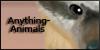:iconanything-animals: