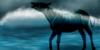 :iconapocalypse-horses: