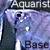 :iconaquarist-base: