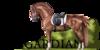 :iconasgardian-horse: