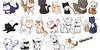 :iconaskcats:
