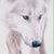 :iconaurorawolf1290: