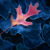 :iconautumn-leaf8: