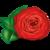 :iconautumn-rose-red: