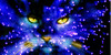 :iconawarriorcatsfanclub:
