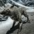 :iconawesomedemonwolf: