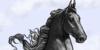 :iconbagliore-saddlebred: