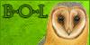 :iconbarn-owl-lover: