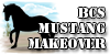 :iconbcs-mustang-makeover: