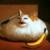 :iconbeabea-bobcat: