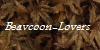 :iconbeavcoon-lovers: