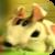 :iconbeerbreath: