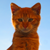 :iconbenevolent-cat: