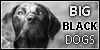 :iconbigblackdogs: