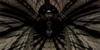 :iconbiotrons-fractals: