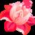 :iconbks-design: