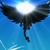 :iconblack-drag-zhero97: