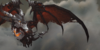 :iconblack-dragonflight: