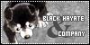 :iconblack-hayate-and-co: