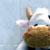 :iconblack-snowball: