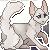 :iconblackbirdcat: