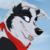:iconblazerwolf21: