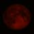 :iconblood-moon54: