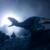 :iconbloodyraptor: