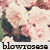 :iconblowroses: