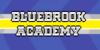 :iconbluebrook-academy: