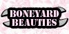 :iconboneyard-beauties: