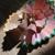 :iconbooyakana777: