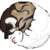 :iconbramblehawk: