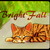 :iconbright-fall: