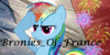 :iconbronies-of-france: