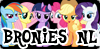 :iconbroniesnl: